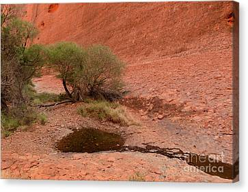 Canvas Print featuring the photograph Walpa Gorge 01 by Werner Padarin