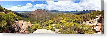 Wangara Hill Flinders Ranges South Australia Canvas Print by Bill Robinson