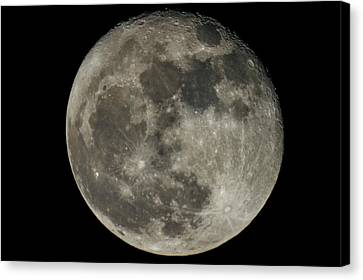 Waning Moon The Day After The Supermoon November 15, 2016 Canvas Print by Rick Grossman
