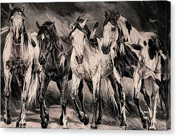 War Horses Canvas Print by Dennis Baswell