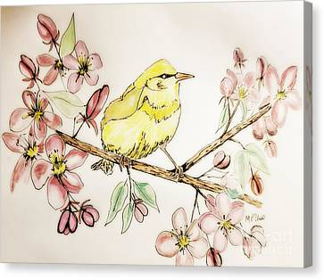 Warbler In Apple Blossoms Canvas Print