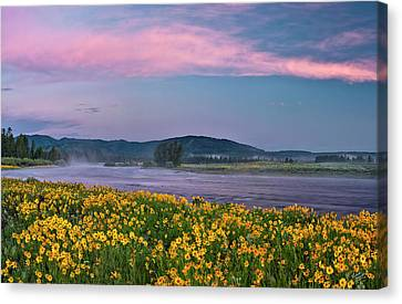Warm River Spring Sunrise Canvas Print by Leland D Howard