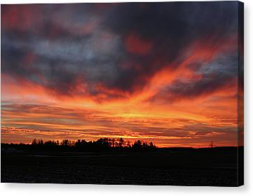 Warm Sunset Glow Canvas Print by Brook Burling
