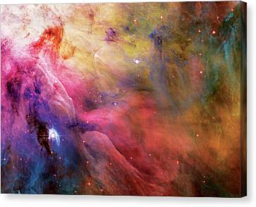 The Hubble Telescope Canvas Print - Warmth - Orion Nebula by Jennifer Rondinelli Reilly - Fine Art Photography