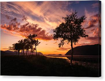 Warmth Canvas Print by Tor-Ivar Naess
