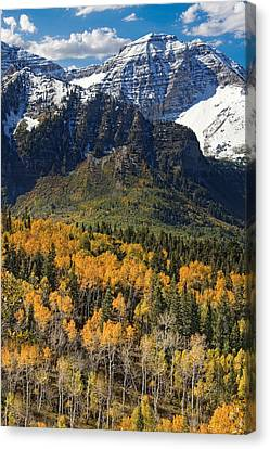 Wasatch Mountains Autumn Canvas Print by Utah Images