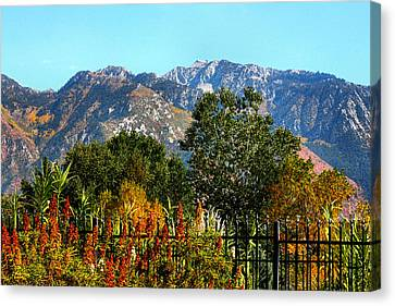 Wasatch Mountains In Autumn Canvas Print