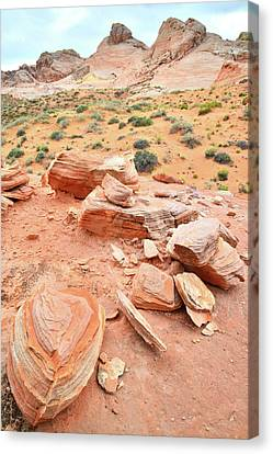 Canvas Print featuring the photograph Wash 4 In Valley Of Fire by Ray Mathis