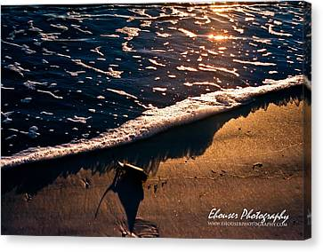 Washed Ashore Canvas Print by Everett Houser