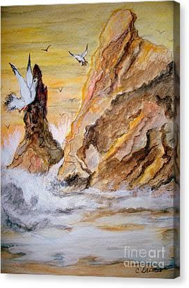 Washed Rocks Canvas Print by Carol Grimes