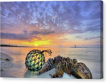 Canvas Print featuring the photograph Washed Up In Pensacola Beach by JC Findley