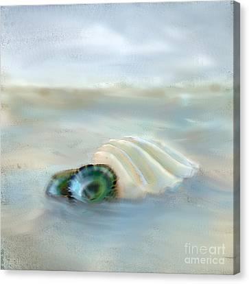 Washing Away Canvas Print by Betty LaRue