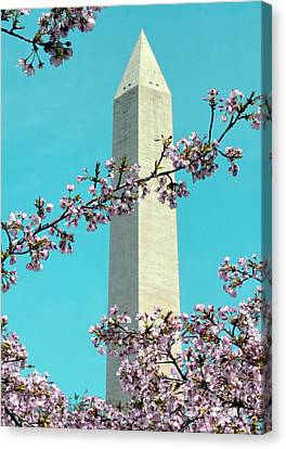 Washington D.c. In Springtime 2 Canvas Print by J Jaiam
