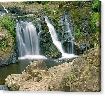 Washington Falls 3 Canvas Print by Marty Koch