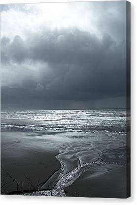 Washington Shore Canvas Print