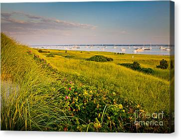 Watch Hill Sunrise Canvas Print by Susan Cole Kelly