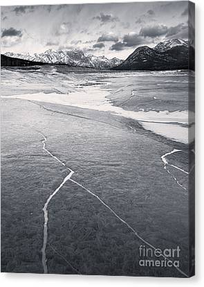 Watch Out For The Black Ice Canvas Print by Royce Howland