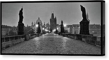Watchers Canvas Print by Jason Wolters