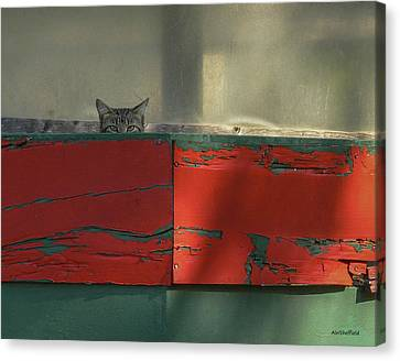 Watchful Cat Canvas Print by Allen Sheffield