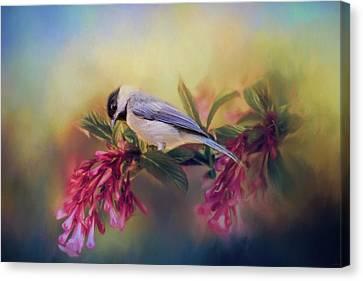 Chickadee Canvas Print - Watching Flowers Bloom Bird Art by Jai Johnson