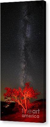 Watching In Awe As The Milky Way Rises Panorama - Enchanted Rock Fredericksburg Texas Hill Country Canvas Print