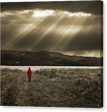 Watching In Red Canvas Print by Meirion Matthias