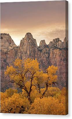 Watching Over Zion  Canvas Print
