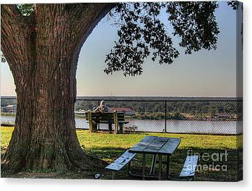 Watching The River Flow Canvas Print by Larry Braun