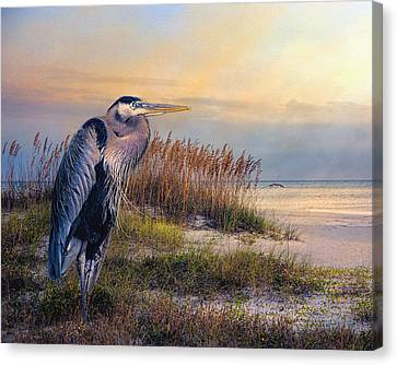 Watching The Sun Go Down Canvas Print by Brian Tarr