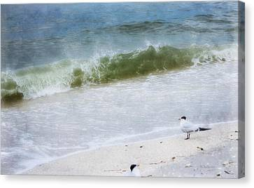 Watching Waves Crest And Break Canvas Print