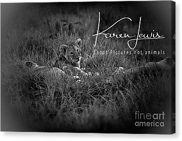 Canvas Print featuring the photograph Watching You Watching Me by Karen Lewis