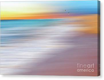 Water Abstraction II With Gulls By Kaye Menner Canvas Print