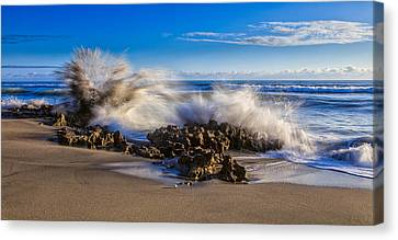 Water And Earth Collide Canvas Print by Andres Leon