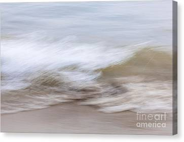 Water And Sand Abstract 2 Canvas Print by Elena Elisseeva