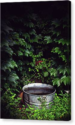 Canvas Print featuring the photograph Water Bearer by Jessica Brawley