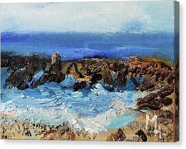 Water Catcher Canvas Print by Michael Helfen