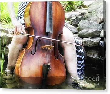 Water Cello  Canvas Print by Steven Digman