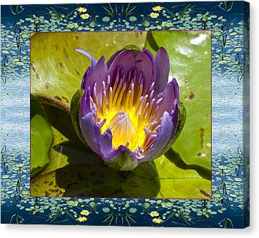 Canvas Print featuring the photograph Water Chalice by Bell And Todd