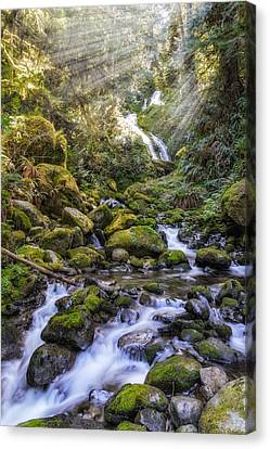 Water Dance Canvas Print by James Heckt