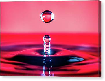 Water Drop In Red Canvas Print