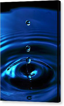 Water Drop Canvas Print by Marlo Horne