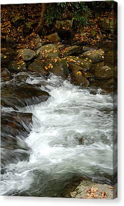 Water-fall Canvas Print