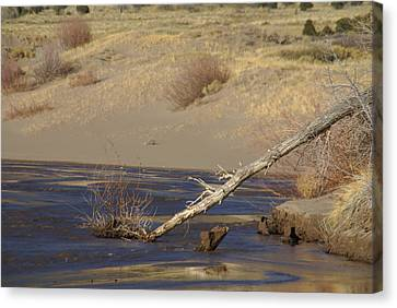 Water Flow In The Great Sand Dunes Canvas Print