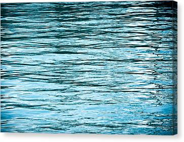 Water Flow Canvas Print by Steve Gadomski