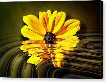 Canvas Print featuring the photograph Water Flower by Gary Smith