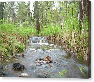 Water Flows After A May Rain Canvas Print by Kent Lorentzen