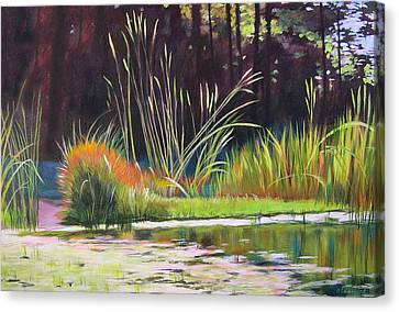Water Garden Landscape Canvas Print by Melody Cleary