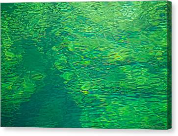 Water Green Canvas Print by Britt Runyon