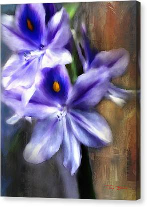 Water Hyacinth Canvas Print by Fred Baird