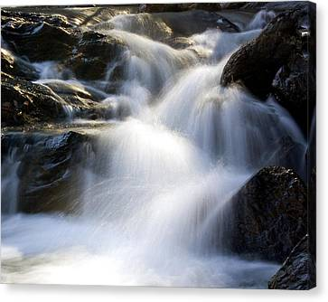 Canvas Print featuring the photograph Water In Motion by Alan Raasch
